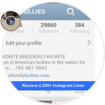Buy 2,500 Instagram Likes