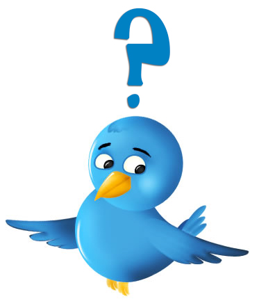 Confused-Twitter-Bird