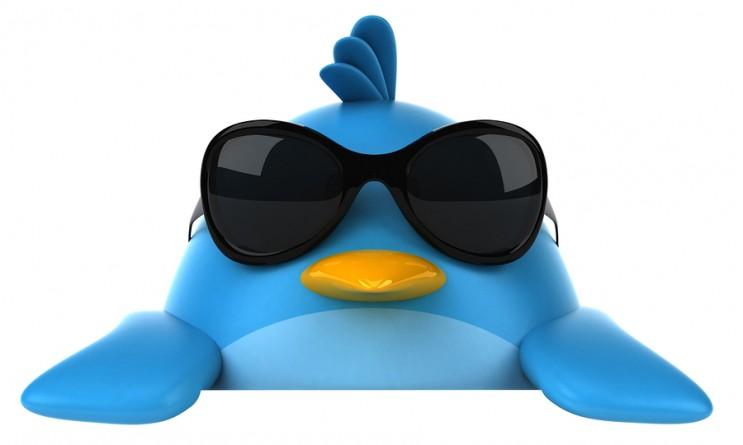 cool-twitter-bird-743x445