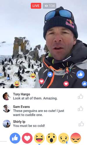 je-facebook-live-reactions