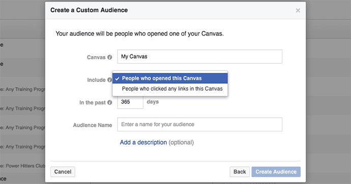 facebook-canvas-custom-audiencs-5 (1)
