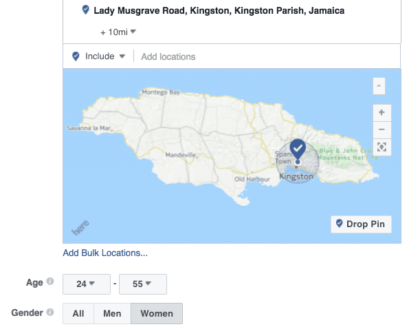 Facebook-local-marketing-custom-audience-targeting