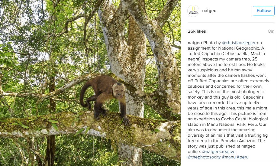 11 hacks to become Instagram famous National Geographic Instagram